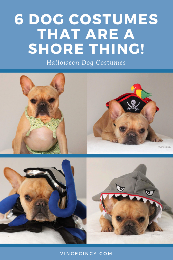 6 Halloween Dog Costumes that are under the sea