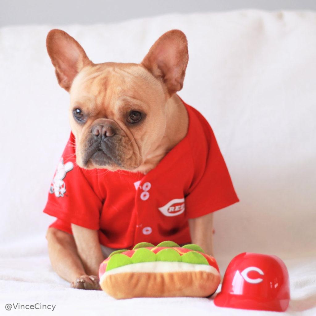 Vince Cincy Reds jersey