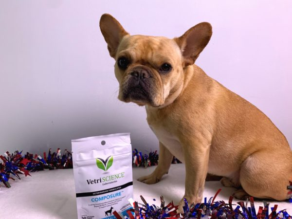 Reduce Your Dog's Anxiety with VetriScience Composure