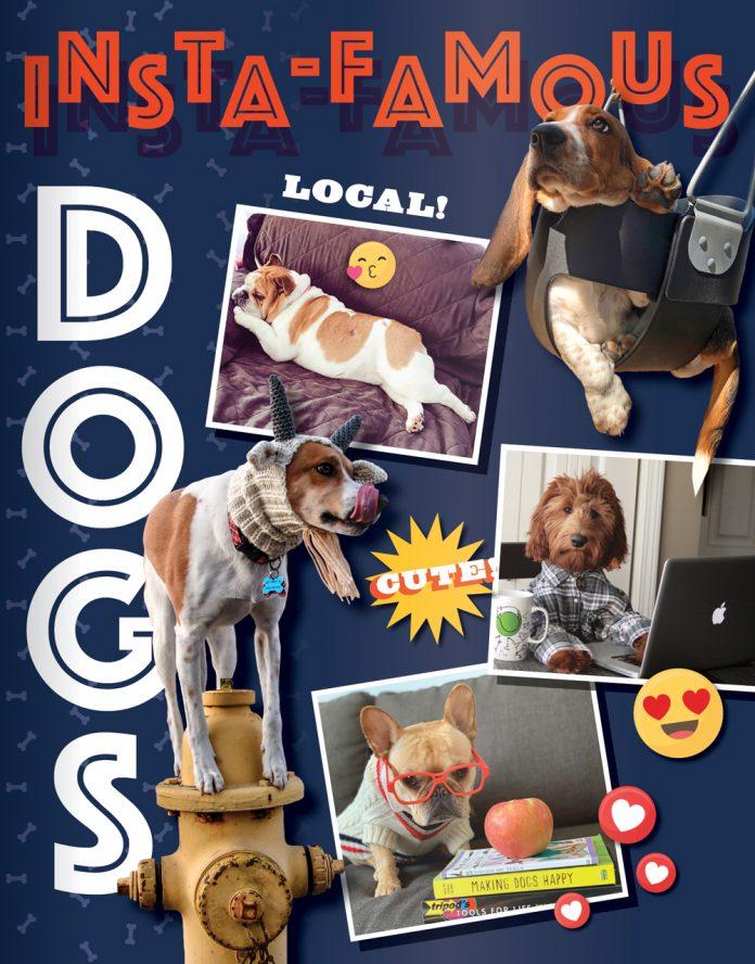 Cincinnati Magazine Best of Cincinnati Insta-Famous Dogs